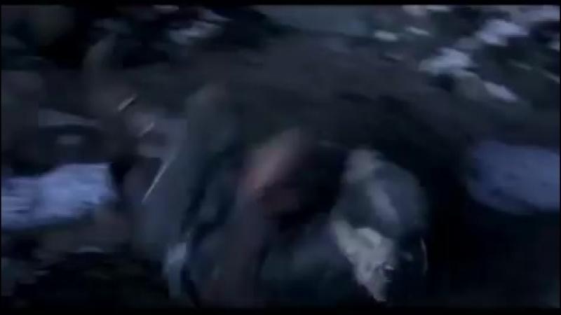 Assassin's Creed vine (Ezio Auditore)