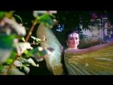 Восточное шоу от Анны Козловской (промо ролик)