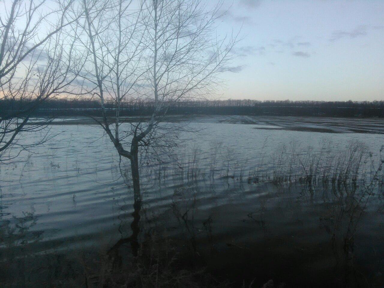 На Черкащині почалася масштабна повінь (фото)