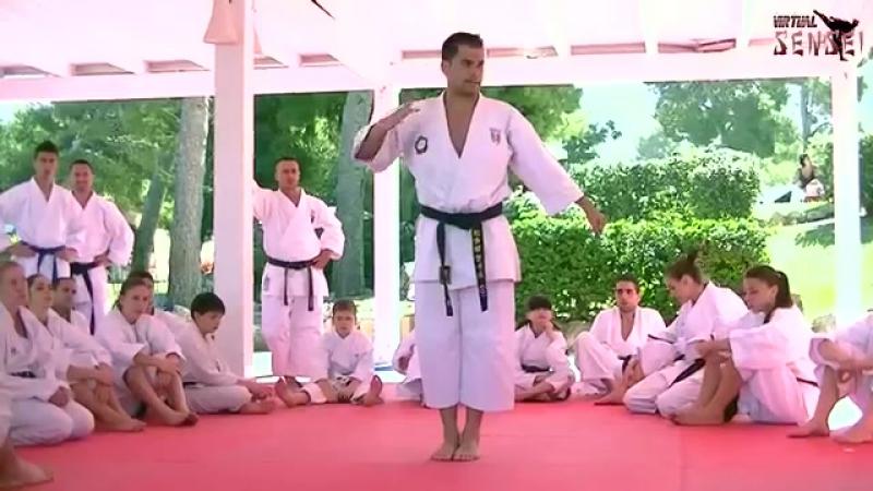 Luca Valdesi teaching kata Unsu part 2