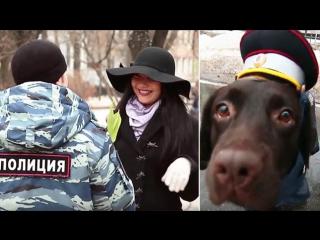 МВД России поздравляет с Международным женским днем