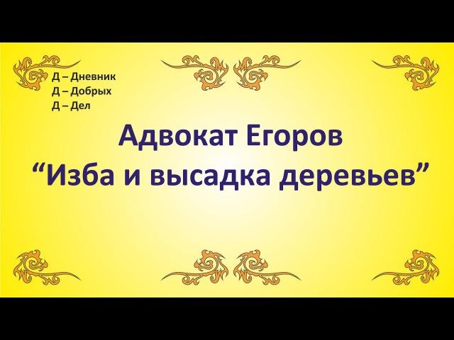 ДДД - Адвокат Егоров Изба и высадка деревьев