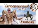 ГОРНАЯ ОХОТА НА ТЯНЬШАНСКОГО АРХАРА Mountain hunting in Kyrgyzstan