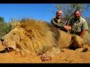 Охота на льва, Калахари