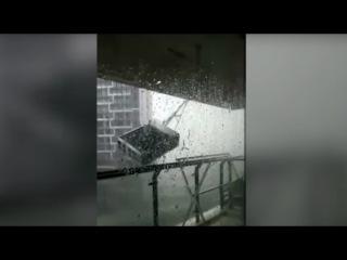 Тайфун «Хато» в Южном Китае, или Когда порывы ветра сметают всё на своём пути