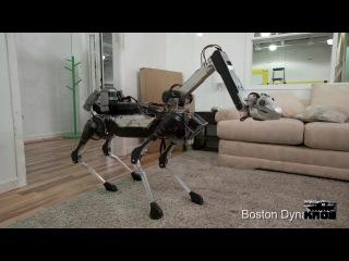 Судьбинушка робота-собаки из BostonDynamics (озвучка, много мата)