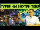 Нанотурбины в клетках СУПЕР ТЕХНОЛОГИЯ ПРИРОДЫ Синтез АТФ