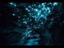 Пещера светлячков. Нереальная красота. HD.