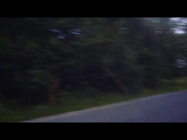 L_s29 video