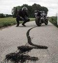 Moto Life фото #27