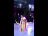 Safinar belly dancer 8568