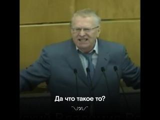 Жириновский: «Мысвами приняли сверхдурацкий закон»