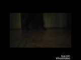 XiaoYing_Video_1484765004798