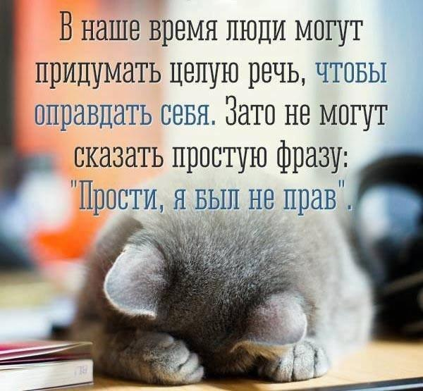 Фото №456245933 со страницы Ксении Костиенко