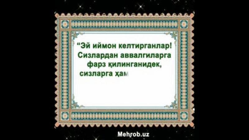 2_5290007409123655738.mp4
