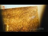 Hz.Muhammed Allah'ın Elçisi 2017 (Film Türkçe Dublaj)