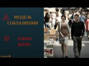Модель соблазнения Как соблазнить девушку Альфа мачо