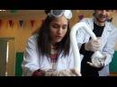 Химические опыты для детей Крио шоу Опыты с азотом