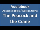 Aesop's Fables - The Peacock and the Crane (текст, перевод и транскрипция слов)