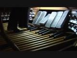Полет шмеля на педалях органа. Dr. Carol Williams