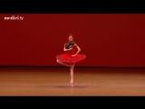 Svetlana Zakharova - Don Quixote - Variation