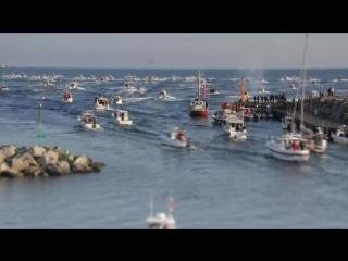 TMB 2017 ловля лосося троллингом