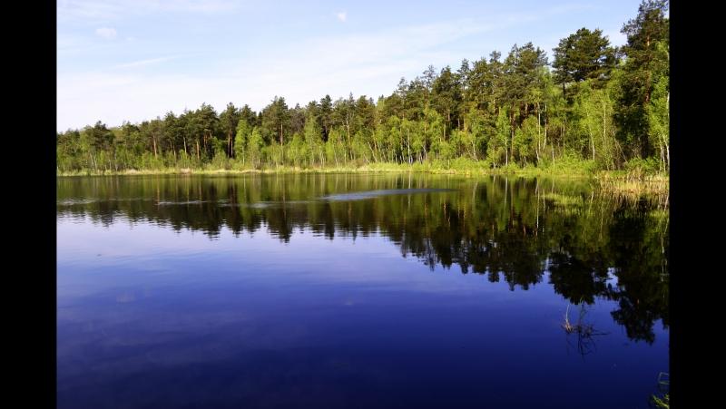 [По просторам Беларуси] На озеро Горное Ганцевический р-н 2017