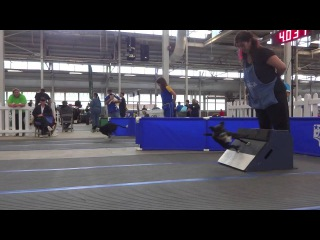 CanAm Classic 2014 Flyball Tournament