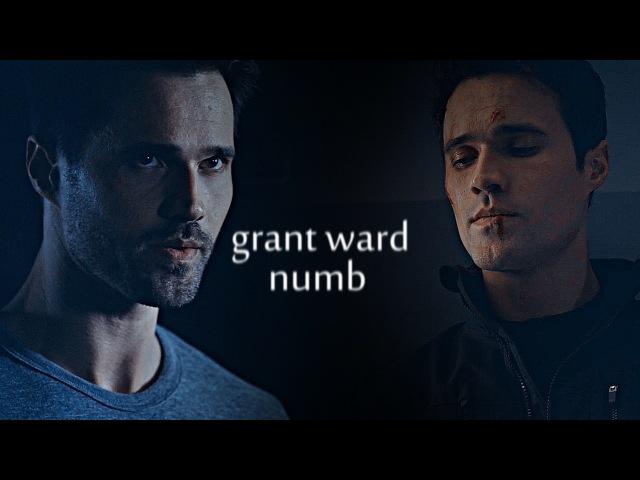 Grant ward (john garrett)    numb
