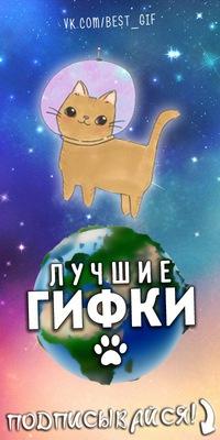 Сам ботс | Чат-боты | ВКонтакте