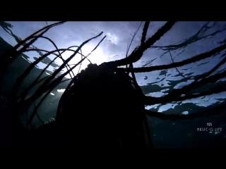 Hakan Akkus - I Cant Be (Bugra Atmaca Remix)(Video Edit)