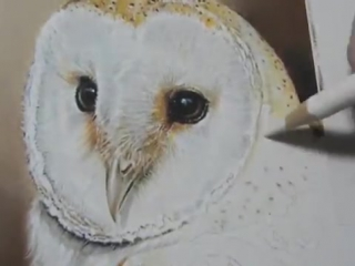 Painting a Day Demonstration-Barn Owl by Roberta Roby Baer, PSA