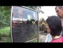 ✩ Место гибели Виктора Цоя. Автостопом из Питера в Ригу