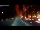 Дорога через горящий лес. Сквозь ад