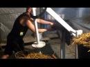 Как делать грибные блоки вешенка Крым помещения для производства грибных блоков