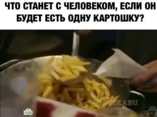 Что станет с человеком, если он будет есть одну картошку