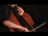Renaud Garcia-Fons - Rock Wandering (solo)