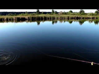 Девушки на рыбалке не только купаются и загорают )))