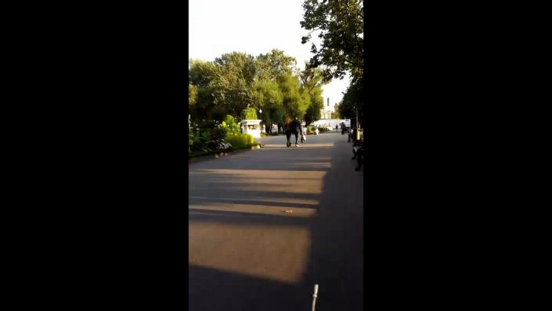 Бабье лето Парка Горького. Прогулка на лясопете)