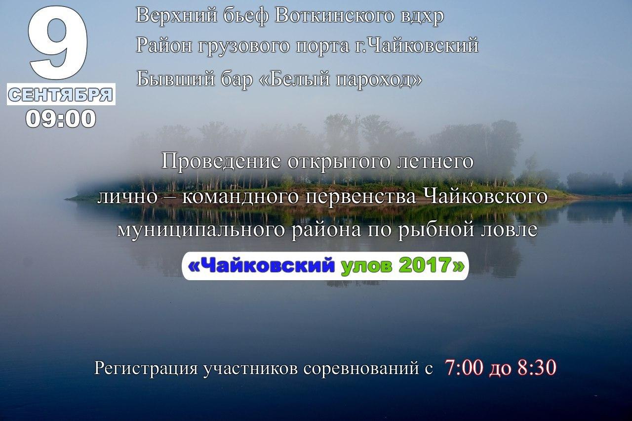 чайковский улов, Чайковский, 2017 год