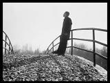 Жан Татлян - Осенний блюз (М)