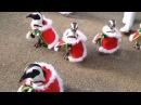 Penguins Dressed as Santa Claus at Japanese Zoo