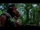 Schwarzenegger peeps Katy Perry