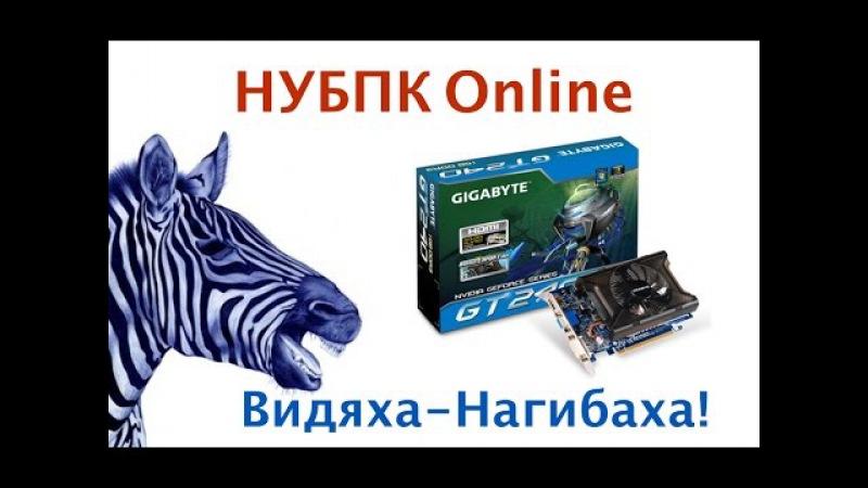 Развод на AVITO - Geforce 240 - Нагибака! - НУБПК Online