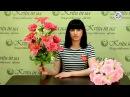 Новинки в интернет-магазине Kvitu! № 525 Букет роза с лилиями, 60см