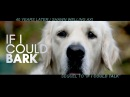 IF I COULD BARK BEST DOG FILM OFFICIAL VIDEO