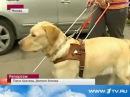 Алексей Евгения и их собака поводырь Черчилль