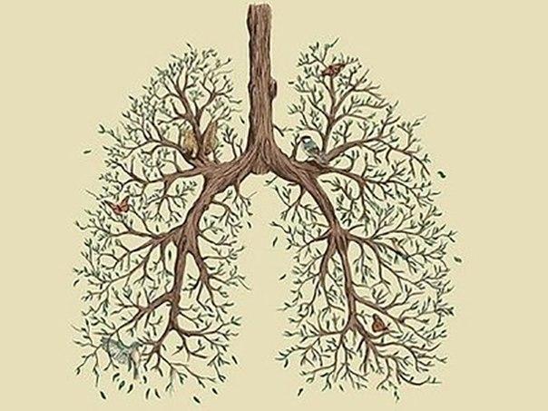 Как учили дышать наши предки