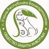 Общество защиты бездомных животных города Учалы