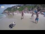 Собакен,_который_любит_футболBest_Video60
